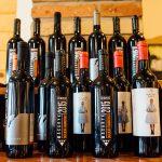 Ochutnávka Skalického vína od domácich vinárov.