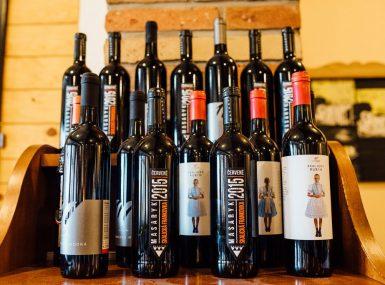Ochutnávka Skalického vína od domácich vinárov v Skalici